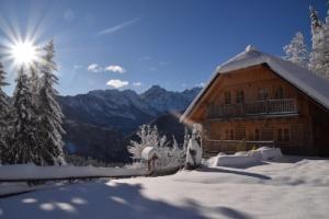Superior House Alpine Dreams