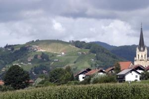 Wine Cellar Frelih