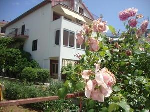 Apartments Hvar Jelsa